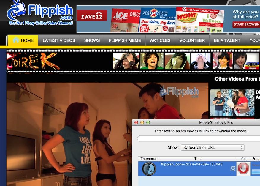 Mac Flippish Downloader  Download Flippish videos on your